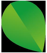Domy zasilane zieloną energią - domy zielone - Osiedle Rozalin - listek
